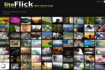 liteFlick logo